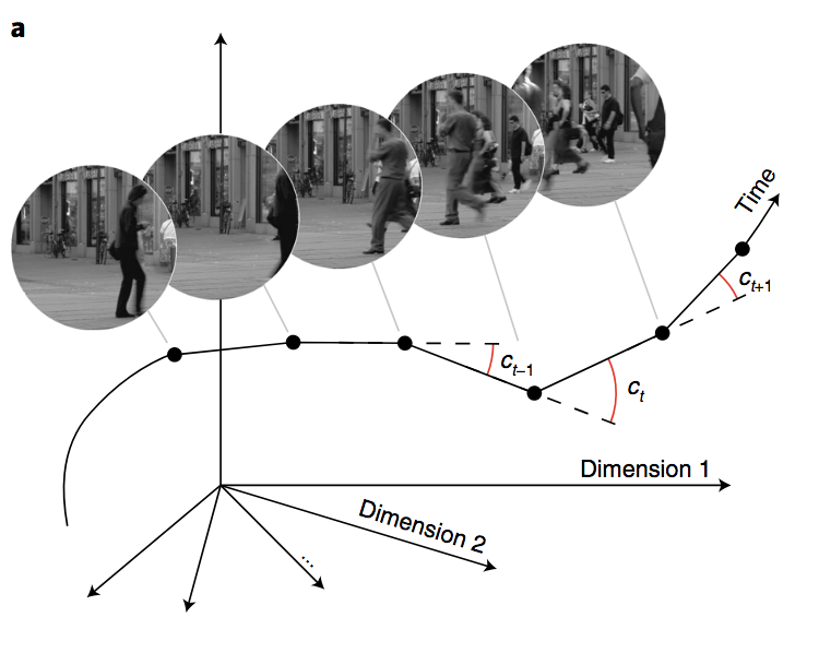 Perceptual Straightening of Natural Videos